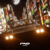 Cover Sandzo - PND