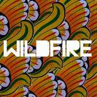 Cover SBTRKT feat. Little Dragon - Wildfire