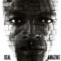 Cover Seal - Amazing
