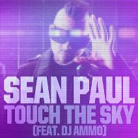 Cover Sean Paul feat. DJ Ammo - Touch The Sky