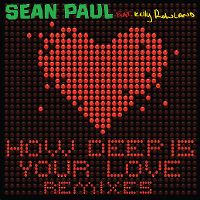 Cover Sean Paul feat. Kelly Rowland - How Deep Is Your Love