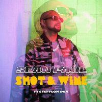 Cover Sean Paul feat. Stefflon Don - Shot & Wine