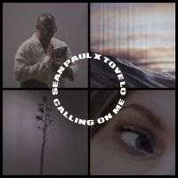 Cover Sean Paul x Tove Lo - Calling On Me