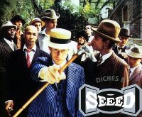 Cover Seeed feat. Black Kappa - Dickes B