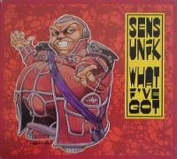 Cover Sens Unik - What I've Got