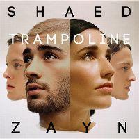 Cover Shaed & Zayn - Trampoline