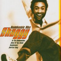 Cover Shaggy - Boombastic Hits