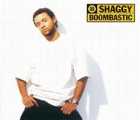 Cover Shaggy - Boombastic