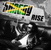 Cover Shaggy - Rise