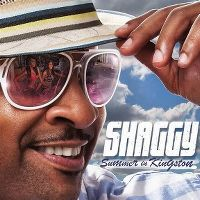 Cover Shaggy - Summer In Kingston