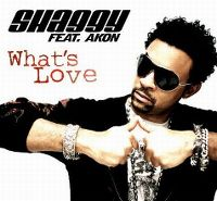 Cover Shaggy feat. Akon - What's Love