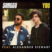 Cover Shaggy feat. Alexander Stewart - You