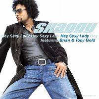 Cover Shaggy feat. Brian & Tony Gold - Hey Sexy Lady