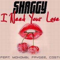 Cover Shaggy feat. Mohombi, Faydee, Costi - I Need Your Love