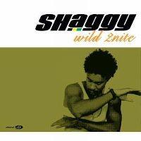 Cover Shaggy feat. Olivia - Wild 2nite
