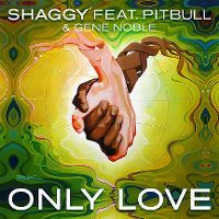 Cover Shaggy feat. Pitbull & Gene Noble - Only Love