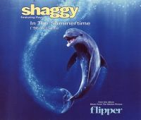 Cover Shaggy feat. Rayvon - In The Summertime