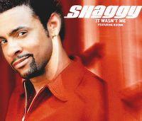 Cover Shaggy feat. RikRok - It Wasn't Me