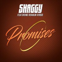 Cover Shaggy feat. Romain Virgo - Promises