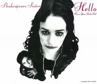 Cover Shakespears Sister - Hello (Turn Your Radio On)