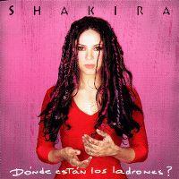 Cover Shakira - Dónde están los ladrones?