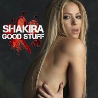 Cover Shakira - Good Stuff