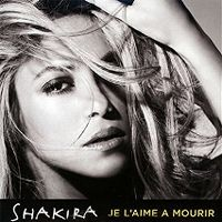 Cover Shakira - Je l'aime à mourir