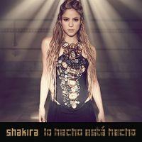 Cover Shakira - Lo hecho está hecho