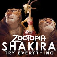 Cover Shakira - Try Everything