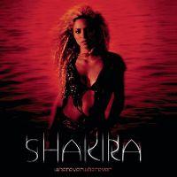 Cover Shakira - Whenever Wherever