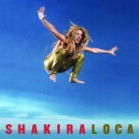 Cover Shakira feat. Dizzee Rascal - Loca