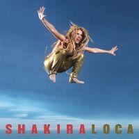 Cover Shakira feat. El Cata - Loca