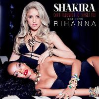 Cover Shakira feat. Rihanna - Can't Remember To Forget You