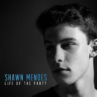 Cover Shawn Mendes - Life Of The Party