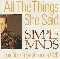Cover Simple Minds - All The Things She Said