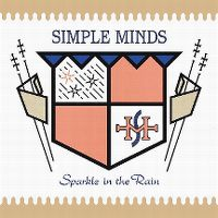 Cover Simple Minds - Sparkle In The Rain