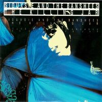 Cover Siouxsie & The Banshees - The Killing Jar