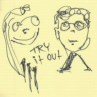 Cover Skrillex & Alvin Risk - Try It Out