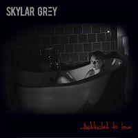 Cover Skylar Grey - Addicted To Love