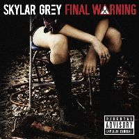 Cover Skylar Grey - Final Warning