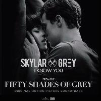 Cover Skylar Grey - I Know You
