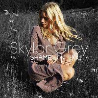 Cover Skylar Grey - Shame On You