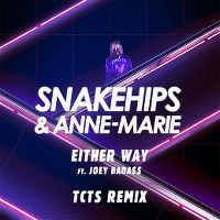 Cover Snakehips & Anne-Marie feat. Joey Bada$$ - Either Way