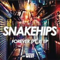 Cover Snakehips feat. Kaleem Taylor - Forever (Pt. II)