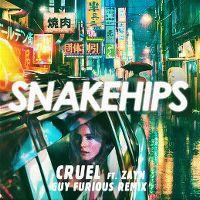 Cover Snakehips feat. Zayn - Cruel