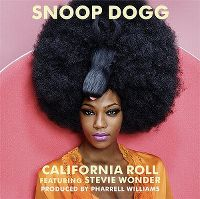 Cover Snoop Dogg feat. Stevie Wonder - California Roll