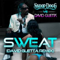Cover Snoop Dogg vs. David Guetta - Sweat