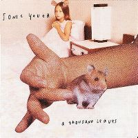 Cover Sonic Youth - A Thousand Leaves