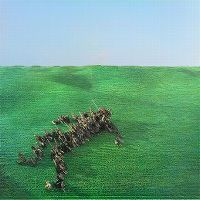 Cover Squid - Bright Green Field