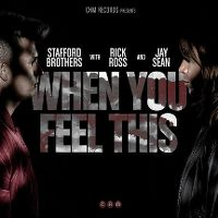 Cover Stafford Brothers feat. Jay Sean & Rick Ross - When You Feel This